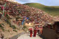 seda för buddhismhögskolalarong som wuming Royaltyfri Foto