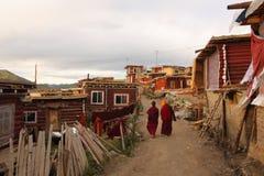 Seda Larong Wuming Buddhismushochschule Stockfotografie