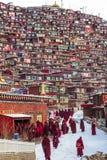 Seda, Sichuan, China-marcha 08,2016, monjes en la universidad buddhish de Seda foto de archivo libre de regalías