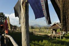 Seda tailandesa con el fondo volado azul del arroz Fotos de archivo