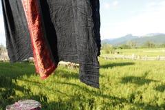 Seda tailandesa en el fondo del arroz Fotografía de archivo libre de regalías