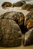 60 sedan stenblockconcretions bildade miljon år zealand för ny otago för moeraki septarian sfäriska Royaltyfria Foton