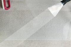 Sede di automobile lanosa Fotografia Stock