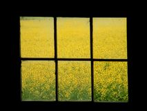 Sede di finestra Fotografie Stock