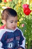 Sedendosi nel prato dei fiori Fotografie Stock
