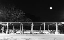 Sedendosi nella neve Immagini Stock
