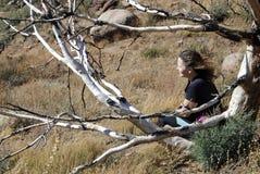 Sedendosi sotto un albero Fotografie Stock Libere da Diritti