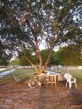 Sedendosi su un banco di parco Fotografie Stock Libere da Diritti