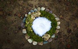 Sedere digitali della natura delle rocce del fiume e del muschio di fotografia neonata di pietra fotografia stock libera da diritti