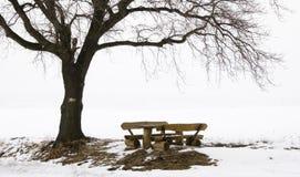 Sedi di resto in un paesaggio di inverno immagini stock libere da diritti