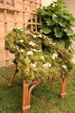 Sedia decorata Fotografie Stock Libere da Diritti