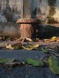Sedia del cemento del cerchio accanto della parete immagine stock