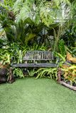 Sedia del metallo nel giardino Fotografie Stock