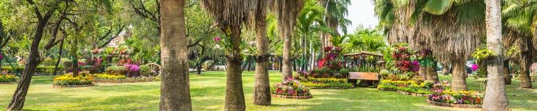 Sedia di legno nel giardino di fiori Fotografie Stock Libere da Diritti
