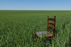 Sedia di mogano con un sedile dorato su un giacimento di grano verde immagini stock