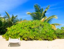Sedia di spiaggia alla moda Fotografia Stock Libera da Diritti