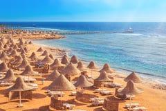 Sedia di spiaggia sabbiosa con gli ombrelli della paglia e la linea di mare immagine stock