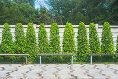 Sedia lunga di legno in giardino all'aperto Fotografia Stock