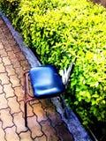 Sedia nel cespuglio Immagini Stock