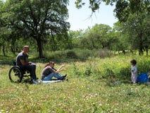 sedia a rotelle di picnic Immagine Stock