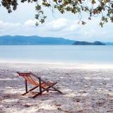 Sedia a sdraio nella tonalità dell'albero, sedia, spiaggia immagine stock libera da diritti
