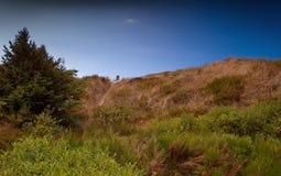 Sedia sulle dune fotografia stock libera da diritti