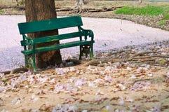 Sedia verde nel giardino Fotografia Stock Libera da Diritti