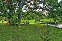 Sedie di Adirondack vicino ad un lago Fotografia Stock Libera da Diritti