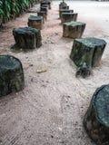 Sedie di legno nel giardino allineato Immagini Stock