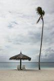 Sedie di spiaggia con l'ombrello e un cocco solo fotografia stock