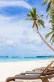 Sedie e palma sulla spiaggia di sabbia, vacanze tropicali Fotografia Stock