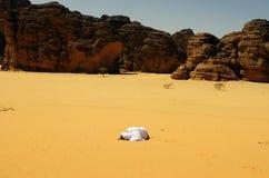 Sediento en el desierto Fotos de archivo