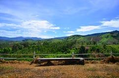 Sedile di legno al fianco di una montagna Immagini Stock