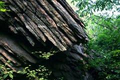 Sedimentärer Felsen Stockfotografie