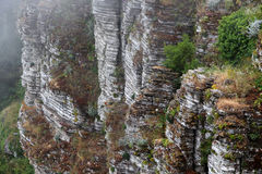 Sedimentary clifftop, in the fog Stock Photography