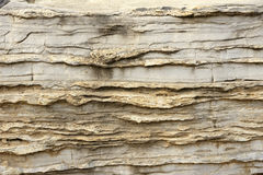 Sedimentary rock. The close-up of sedimentary rock Stock Photos