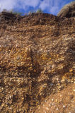 Sedimentary rock. On the southern English coast Stock Images