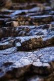 Sedimentary rocks background Stock Photography