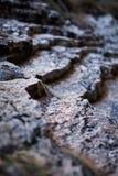 Sedimentary rocks background Stock Photos