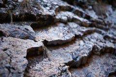Sedimentary rocks background Royalty Free Stock Image