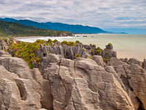 Sedimentary Rocks New Zealand Stock Photo