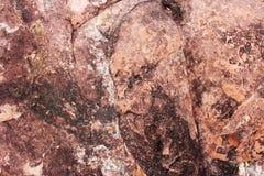 sedimentary textur f?r r?d rock r?tt lantligt stenar textur Bakgrund Natur royaltyfria bilder