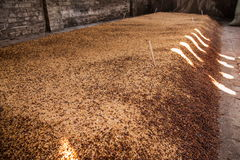 Sedimento di fermentazione della fabbrica di birra della città di Leshan Qianwei Rochester che è Fotografia Stock Libera da Diritti