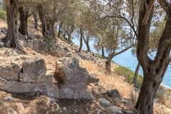 Sedir海岛帕特拉 Shehir Adasa,马尔马里斯港, Mugla,土耳其 免版税库存照片