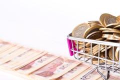 Sedlar och mynt för turkisk Lira med pengar Concep för shoppingvagn Arkivfoton