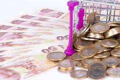 Sedlar och mynt för turkisk Lira med pengar Concep för shoppingvagn Royaltyfri Bild