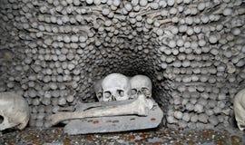 Sedlec藏有古代遗骨的洞穴是一个小天主教教堂, Kutna Hora在捷克 免版税图库摄影