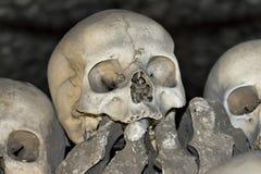 Sedlec藏有古代遗骨的洞穴-藏骸所 库存照片