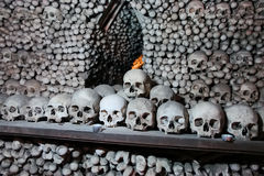Sedlec Ossuary. In the Czech Republic royalty free stock photography