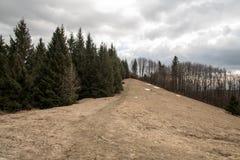 Sedlo pod Malou Kykulou bellow Kozubova hill in early spring Moravskoslezske Beskydy mountains in Czech republic. With meadow and trees royalty free stock photos